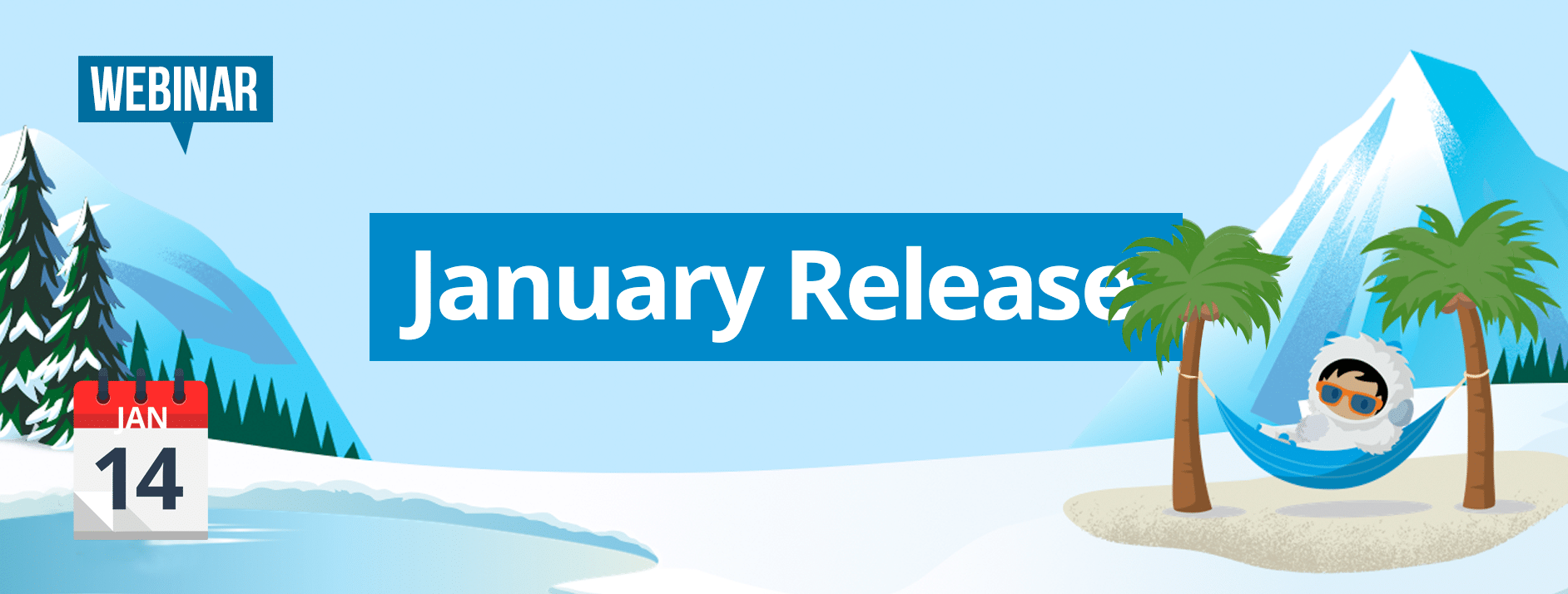 Release webinar January Netive VMS