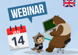 Webinar 14 January Netive VMS