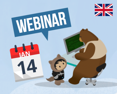 Webinar 14 January Netive VMS