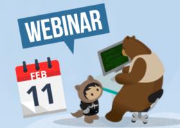Webinar 11 February Netive VMS